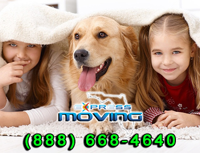 Boca Raton, Student Moving